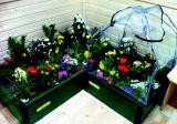 TOLO Pflanzenbeet 75 x 75 cm